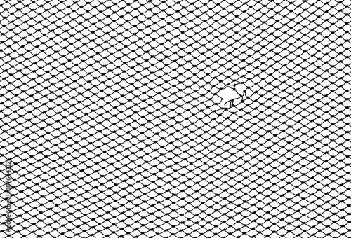 Aluminium Textures silhouette of hole fishing net isolated on white background