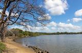 Lagoon at Umlalazi Nature Reserve at Mtunzini South Africa - 187655852