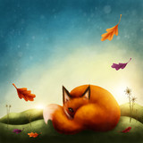 Illustration of a little red fox - 187660628
