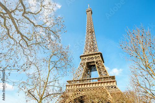 Detail of the Eiffel Tower of Paris - 187666226