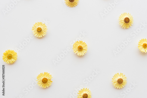 Foto Murales Directly above view of dried yellow everlasting daisies on white table - nature background
