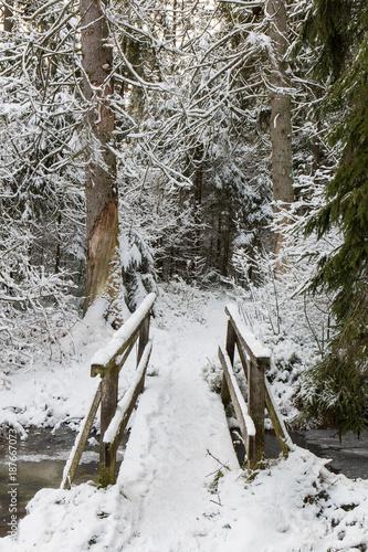 Fotobehang Bruggen Einsame schneebedeckte Brücke