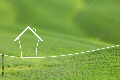 Tuinposter Gras Concept artistic eco healthy living house on blurred meadow background.