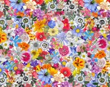 Colorful Background made with Mixed  Flowers