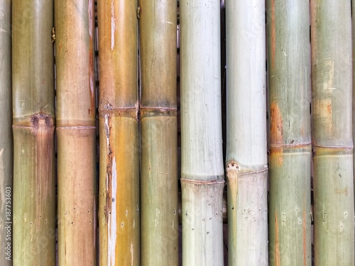 Aluminium Bamboe bamboo wall background wallpaper brown garden line jungle natural old decoration