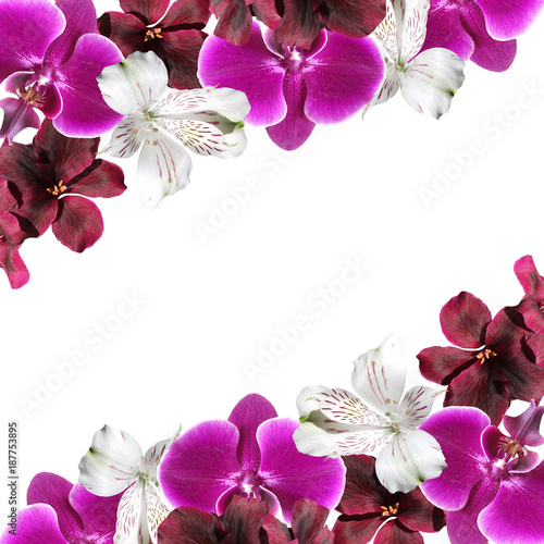 Beautiful floral background with orchids, alstroemerias and pelargonium  - 187753895