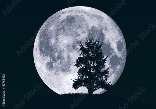 Fridge magnet lune - clair de lune - paysage - arbre - sapin - fond - ciel - rêve - nuit - nocturne - hibou