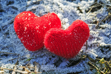 red hearts connected from yarn on a background of grass covered with white fluffy elegant frost