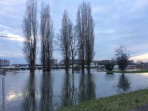 Hochwasser am Fluss / Rhein