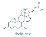 Cholic acid (cholate) molecule. Main bile acid component. Skeletal formula. - 187805819