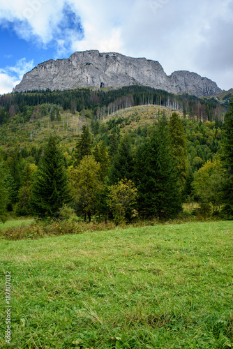 Staande foto Pistache slovakian carpathian mountains in autumn with green forests