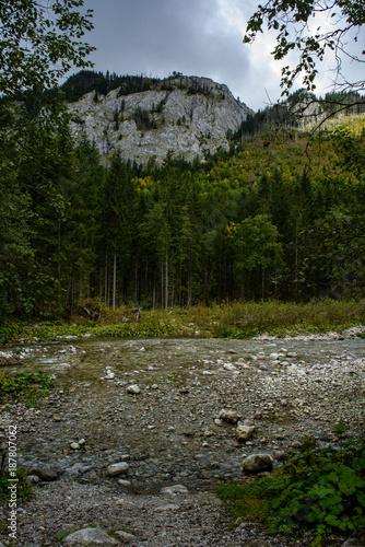 Papiers peints Rivière de la forêt slovakian carpathian mountains in autumn with green forests