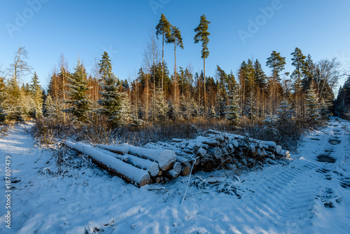 Fotobehang Blauwe jeans car tire tracks on winter road