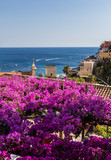 Positano framed by pink bougainvillea and boats in the background. Italy
