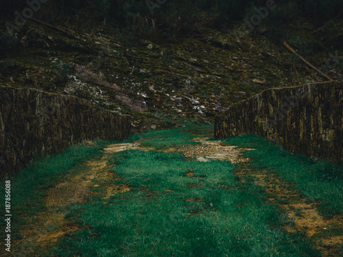 Papiers peints Rivière de la forêt Roman Bridge