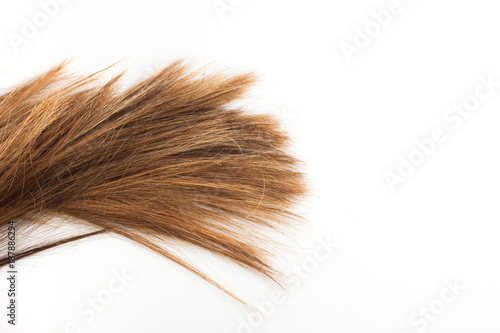 Keuken foto achterwand Kapsalon Vivo sempre insieme ai miei capelli