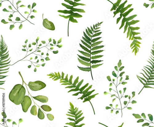 Seamless greenery green leaves botanical, rustic pattern Vector floral watercolor style design: forest fern frond leaf, herbs. Nature Wallpaper, natural texture, trendy print isolated white background © Alewiena