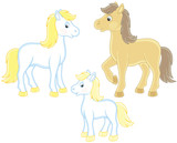 A family of a white horse, a little foal and a courser, vector illustrations in funny cartoon style - 187900872