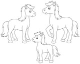 A family of a horse, a little foal and a courser, black and white vector illustrations in funny cartoon style for a coloring book - 187900874