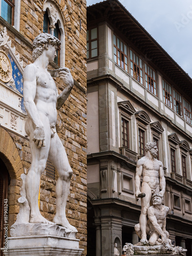 In de dag Florence David by Michelangelo in Florence, Italy