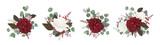 Vector floral bouquet design: garden red burgundy rose white peony flower amaranthus Eucalyptus branch greenery leaves berry. Wedding vector invite card Watercolor designer editable element set bundle - 187909047