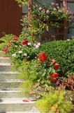 Escalier fleuri d'une maison