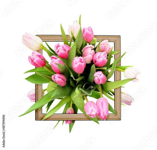 Pink tulip flowers bouquet and a frame