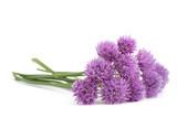 Chives  Flowers bouquet - 188002478