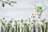 Snowdrops on a wooden background and envelope