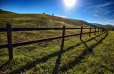 Horses outdoor in ranch at beaty landscape - 188013877