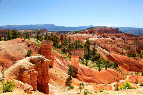 Fotobehang Blauwe hemel Red hoodoo and green pine tree landscape of Bryce Canyon National Park