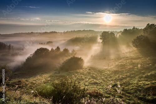 Zadziwiający świt przy mgłową doliną w jesieni, Polska
