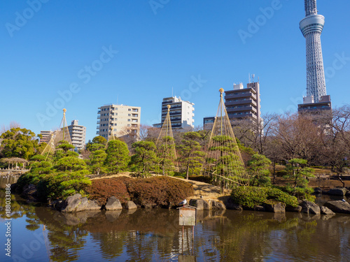 Foto Murales 隅田公園