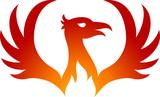 Phoenix bird logo - 188038842