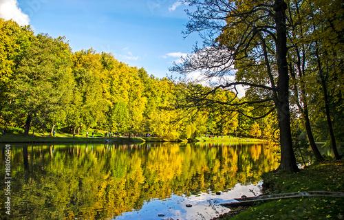 Autumn forest river reflection landscape