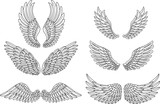 Heraldic wings set for tattoo or mascot design - 188079652