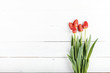 Bouquet of red fresh tulips on a white wooden background, horizontal photo. space for text - 188081029
