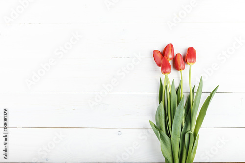 Bouquet of red fresh tulips on a white wooden background, horizontal photo. space for text