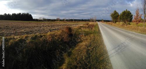Papiers peints Route dans la forêt droga przez pola