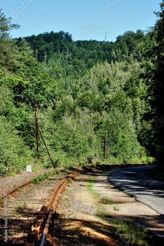 Papiers peints Route dans la forêt Zbiornik Pilichowice