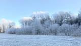 Winter day - 188139203