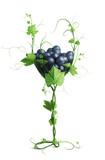 a glass of grapevine - 188171257