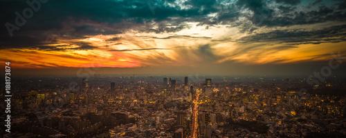 Tokyo sunset aerial panoramic view