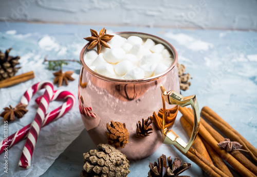 Fotobehang Chocolade Hot chocolate with marshmallows, cinnamon and anise, served with christmas decoration. Selective focus.