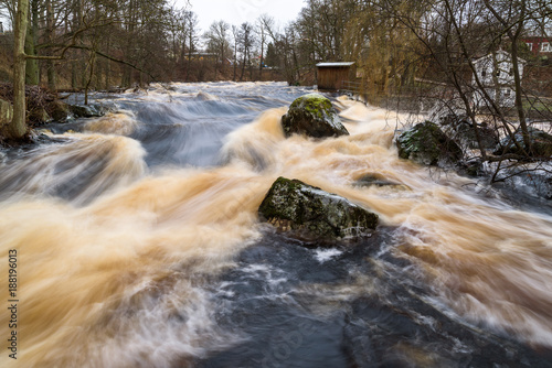 Foto Murales Early spring flood in the Morrum river in Sweden. Extreme amounts of water makes the river overflow and the water rush furiously over rocks and trees. January 2018.