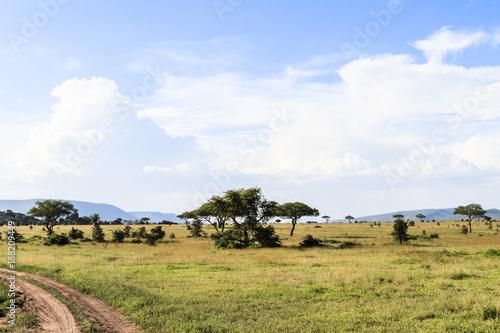 Aluminium Blauwe hemel Cloudy landscape in the Serengeti. Tanzania, Africa