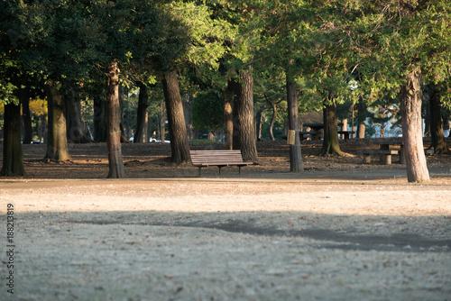 Foto Murales ベンチ