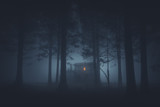 scary house in mysterious horror forest at night - 188226015