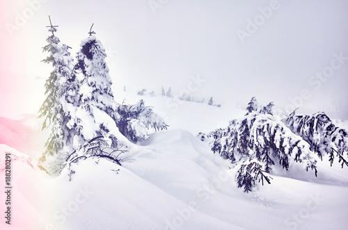 Retro toned picture of a winter landscape in a snowy day. - 188280291