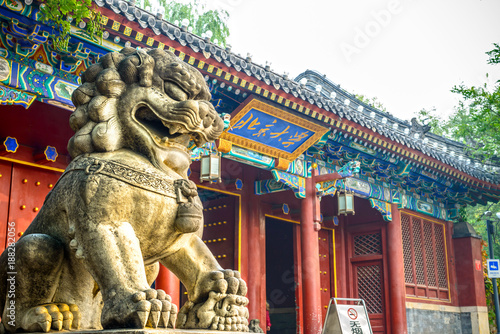 Fotobehang Peking Chinese guardian lion. Located in west gate of Peking University, Beijing, China.
